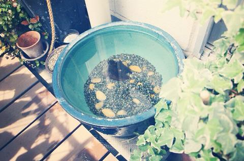 ステップ1:水を作る