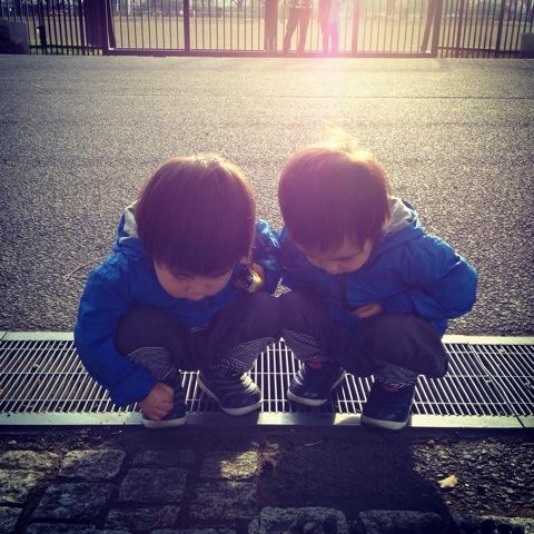 双子とアリ