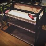 センター部分『黒い鉄脚の棚』完成。我が家の手作りオープンキッチン Version 0.2