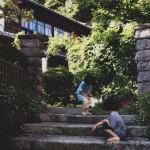 鎌倉を鳥の都にするプロジェクト