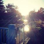 走る。 〜ありがとう太陽〜