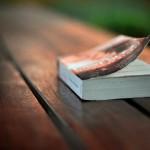 「ノマドワーカーという生き方」の著者、立花岳志さんのセミナー「普通のサラリーマンが出版する方法」に行ってきました。