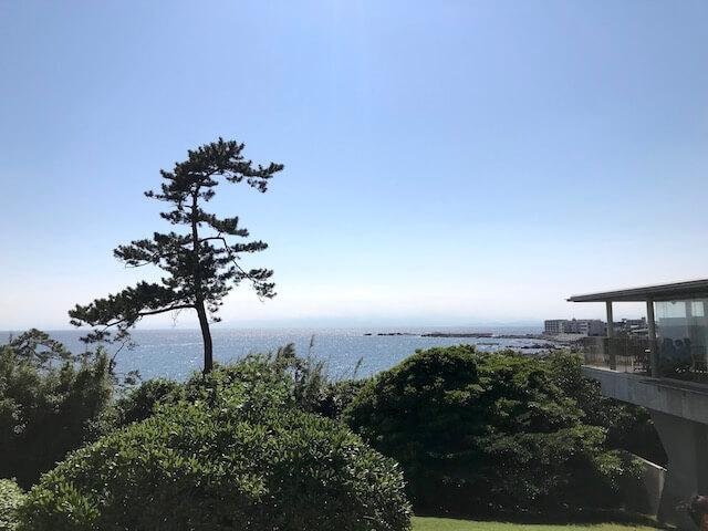 神奈川県立近代美術館 葉山 からの景色 キラキラの海