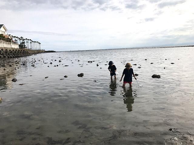 和賀江島で磯遊び、満潮